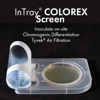InTray COLOREX Screen